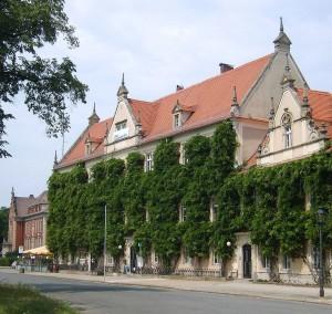 Rathaus von Riesa