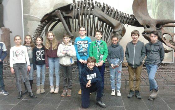 Französische Schüler des Collège Bon Accueil zu Gast am Geschwister-Scholl-Gymnasium Mannheim